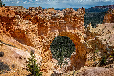 Natural Bridge, Bryce National Park