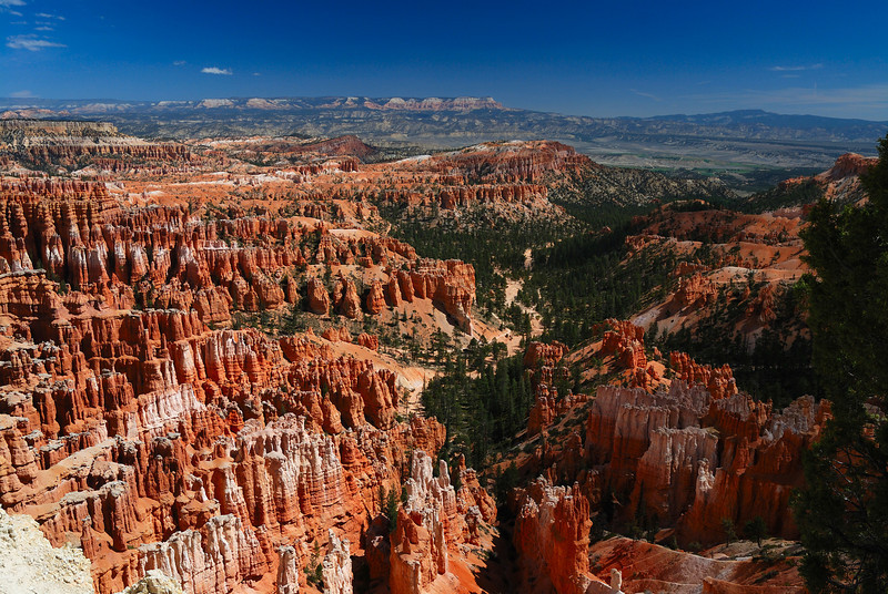 Bryce_0145 1_rs