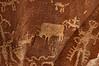 Petroglyphs_0009