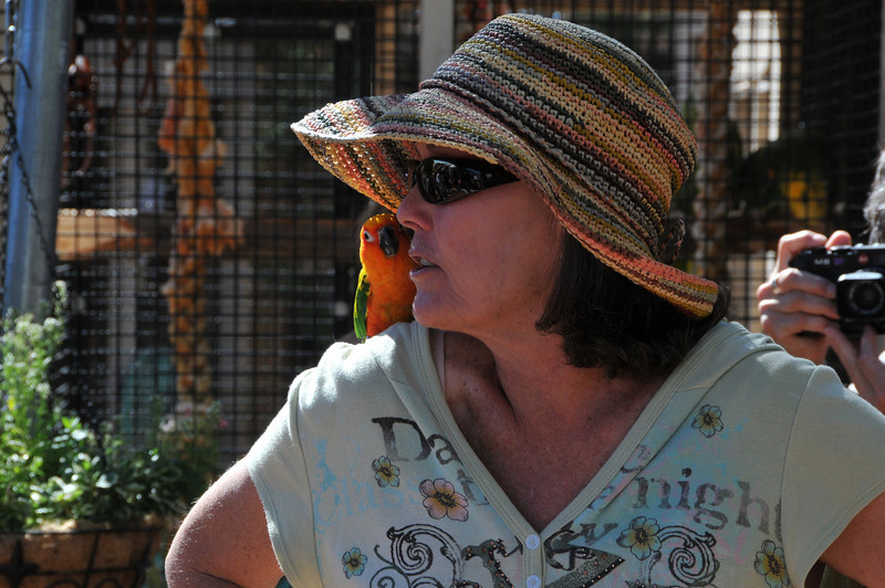 A caregiver at Feathered Friends telling about care for the birds at the sanctuary.