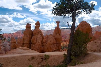 Hoodoos. Bryce Canyon National Park