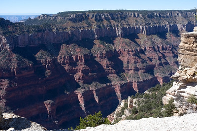 Day trip to the Grand Canyon.