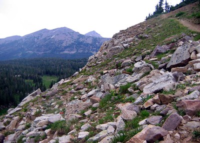 The hike to Lofty Lake in Utah's Uintas. On the way down.