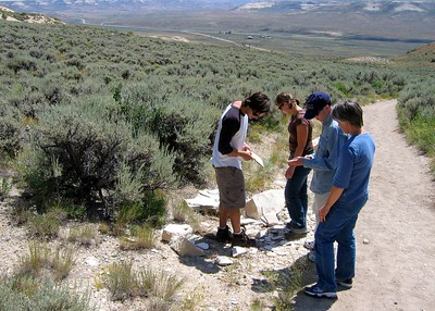Fossil Butte, Wyoming. Fossil hunting on the quarry trail.