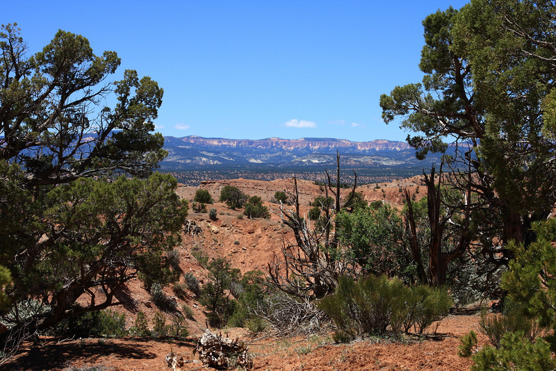 Bryce Canyon in the distance, taken from Kodachrome Basin