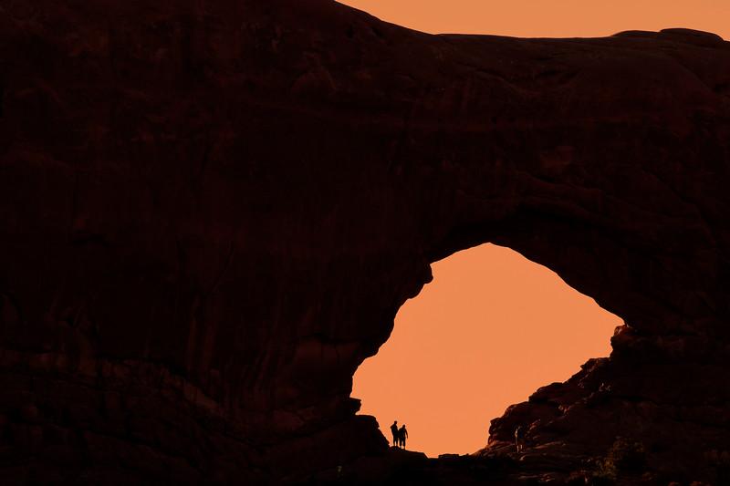 Arches NP-Utah-6-25-18-SJS-006