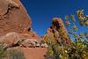 ArchesNP-Utah-6-22-18-SJS-022