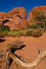 Arches NP-Utah-6-25-18-SJS-049