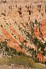 BryceCanyonNP-Utah-6-27-18-SJS-099