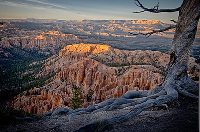 Bryce Point  Overlook at Bryce Canyon National Park