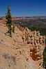 BryceCanyonNP-Utah-6-27-18-SJS-138