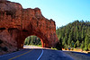 BryceCanyonNP-Utah-6-27-18-SJS-050