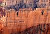BryceCanyonNP-Utah-6-27-18-SJS-080