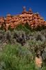 BryceCanyonNP-Utah-6-27-18-SJS-147