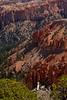 BryceCanyonNP-Utah-6-27-18-SJS-111