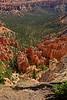 BryceCanyonNP-Utah-6-27-18-SJS-089