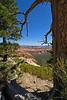 BryceCanyonNP-Utah-6-27-18-SJS-028