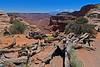 CanyonlandsNP-Utah-6-23-18-SJS-003