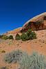 CanyonlandsNP-Utah-6-23-18-SJS-002