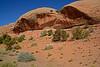 CanyonlandsNP-Utah-6-23-18-SJS-020