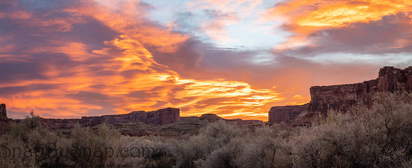 A panorama of the brilliant colors of a sunrise reflecting on clouds over the top of a canyon wall with desert vegetation in the foreground