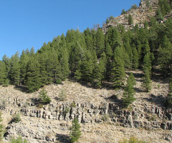 Scenes in Logan Canyon