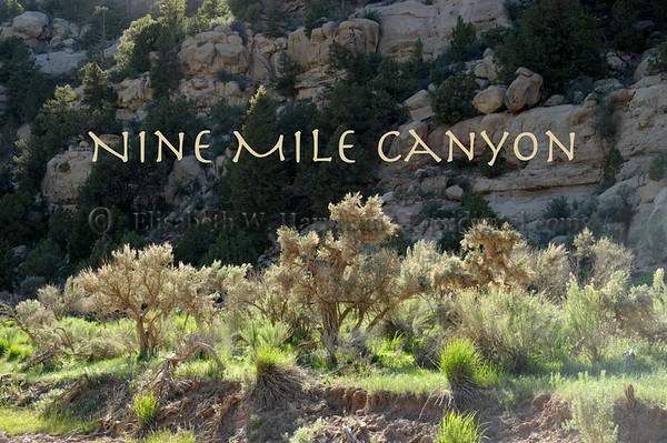 001 - Nine Mile Canyon, Price, Utah