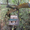 Birdhouse Haven