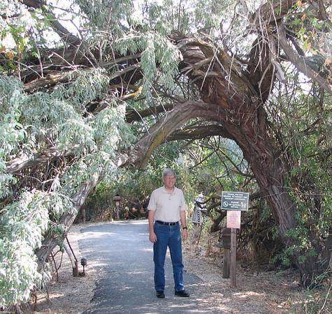 Ogden, UT - Nature Center