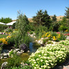 Streams Throughout Gardens