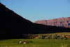 ColoradoRiverCanyon-MoabUtah6-25-18-SJS-010