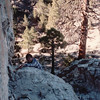 Randal Climbing - Our Week in the Wilderness  10-9-89