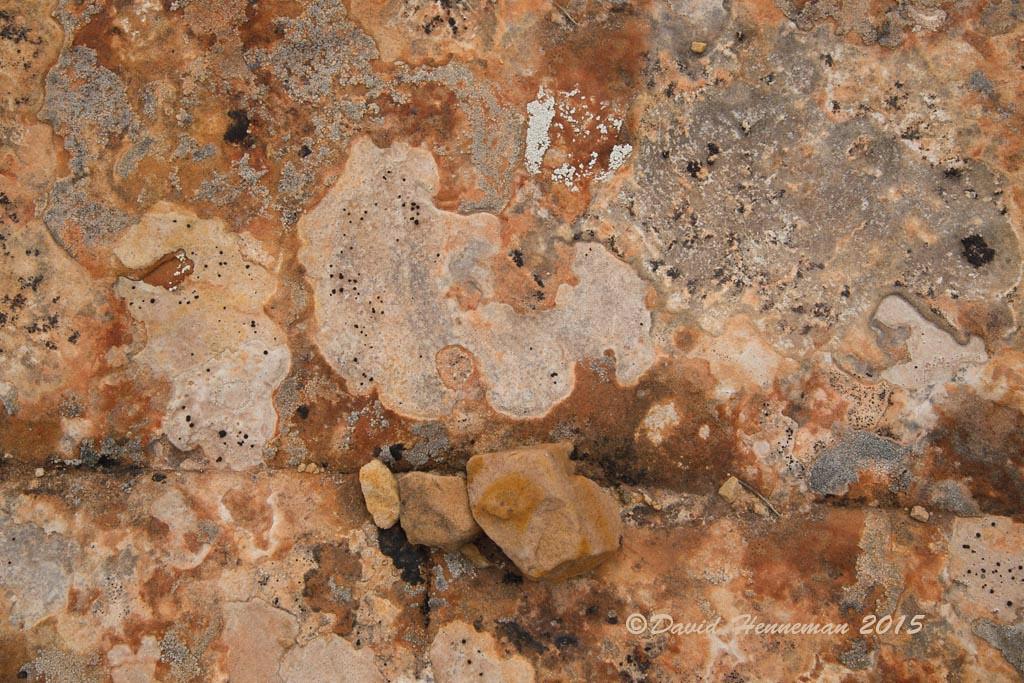 Cedar Mesa Slick Rock