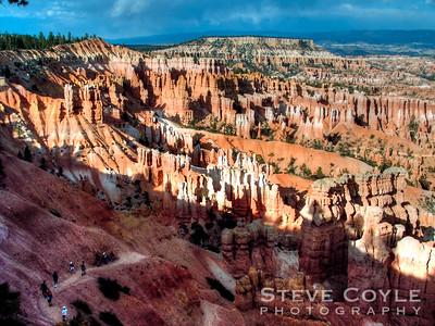 "Looking into Bryce Canyon on a late summer afternoon.  To purchase a print please click the ""buy"" button on the top right to add the image to the cart  Prints are available in three surface finishes. Luster is a semigloss surface, Glossy is a smooth glossy finish and Metallic is printed on a special paper with a metallic backing."