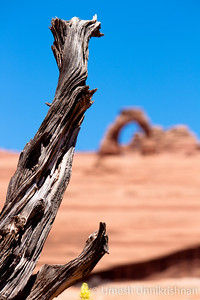 Arches National Park-4