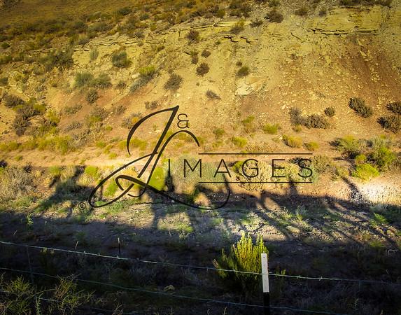 Jacob's Ranch - Zion Canyon Trail Riding