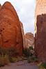 Devil's Garden, Arches National Park, Utah<br /> October 2009