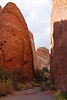 Devil's Garden, Arches National Park, Utah<br /> October 2009