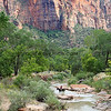 2016-09-28_Zion_Lower Emerald Pool Trail_32.JPG