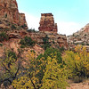 2016-10-11_Capitol Reef_36_Capitol Gorge.JPG