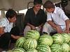 Los niños son habituales vendedores de frutas en las carreteras entre ciudades. Estos cuentan el dinero recaudado a media mañana