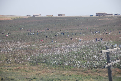 Cotton pickers working in the fields, the photo was taken from the window of train from Samarkand to Bukhara.