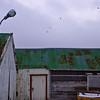 2009-03-02-15-32_0815_K10DUSM