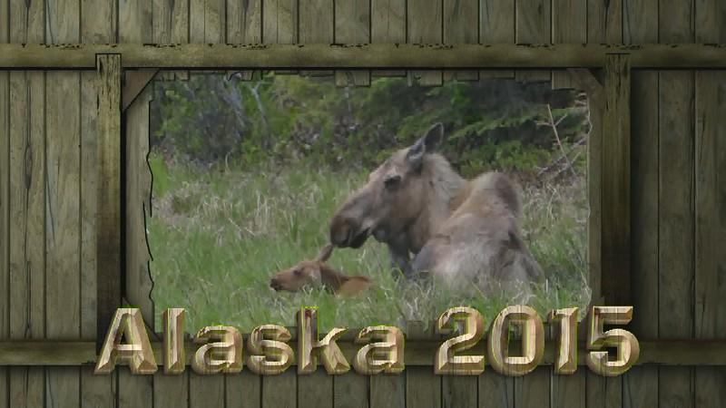 ALASKA 2015 SHORT VERSION