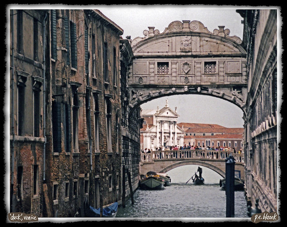Duck!,Venice
