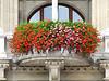 43-City Hall flower box detail