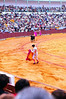 TERCIO DE VARAS (THE LANCING THIRD)<br /> In this first stage, the matador is testing the bull's behavior and responses. After this, a picador will enter on his horse and stab the bull's neck with a lance. In the second stage -- tercio de banderillos (the third of flags) -- the banderillos will plant two razor-sharp sticks into the bull's flank, near where the picador planted his lance, to further weaken the bull by increasing blood loss. I didn't get any shots of that stage. Pretty gruesome business, huh?