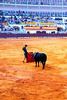 TERCIO DE MUERTE (THE THIRD OF DEATH)<br /> This is the third and final stage, where the matador re-enters the ring alone with only his cape and sword. The popular misconception is that the red of the Tercio de Muerte cape is to anger the bull, but in fact it's to mask the bull's blood. (Bulls are quite colorblind.) Tempting the bull through a series of passes, the matador strives to thrust his sword between the bull's shoulderblades and into the bull's heart, thereby accomplishing a finale to this little ballet of death. Unfortunately for this poor beast, this matador did a botch job of it and it took several attempts before he could finally put an end to the whole affair. He was severely booed. If the matador has done well, he may receive one or both of the bull's ears as a reward, or even the tail. In this matador's case, it's a miracle they didn't cut off his own ears as a reward.