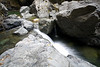 Exploring the Salmon Creek Area - Photo by Pat Bonish