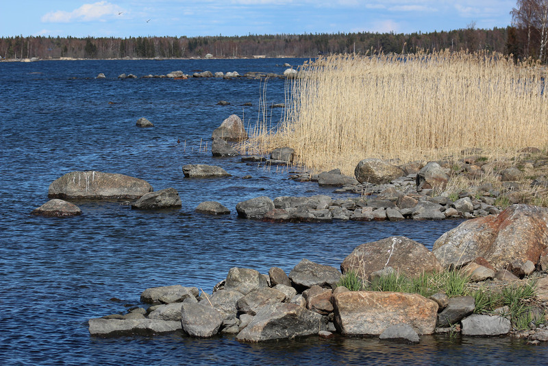 """The Kvarken Archipelago was fascinating.  The land is experiencing a phenomenon known as """"uplift,"""" where the land has actually been rising since the last ice age.  Therefore, there are constantly new islands forming, and coastlines changing."""
